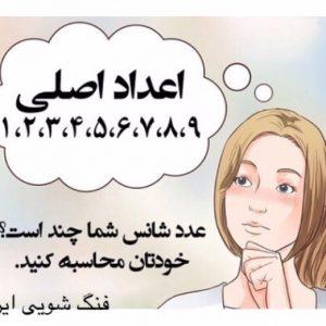 عدد کوا | فنگ شویی ایران